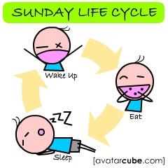 sundaylifecycle